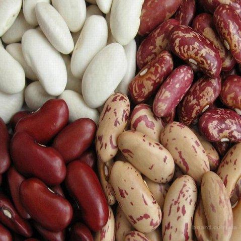 Как сварить фасоль и полезные свойства