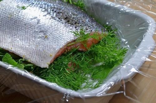 лосось соленый