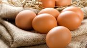 Как выбрать свежие яйца хорошего качества
