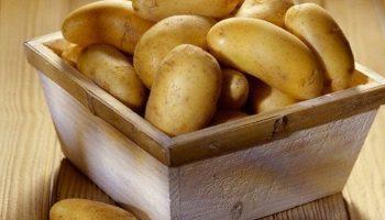Вреден ли картофель для фигуры и здоровья
