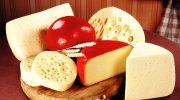 10 фактов в пользу ежедневного употребления сыра