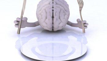 Какие продукты плохо влияют на работоспособность мозга