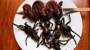 5 блюд которые слабонервным точно не придутся по вкусу