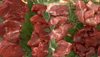 Оленина, медвежатина и мясо кабана: насколько безопасны деликатесы из дичи