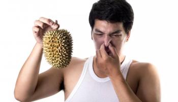 Какой фрукт обладает нежнейшим вкусом но отвратным запахом