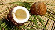 Почему кокос вовсе не орех и что он такое на самом деле