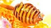 Как обычный мед может стать ядом