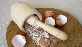 Почему не стоит выбрасывать яичную скорлупу