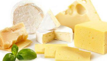 Какой сыр считается самым полезным