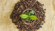 5 фактов о кофе без кофеина, которые вы вряд ли знали ранее