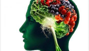 5 продуктов помогающих повысить концентрацию внимания