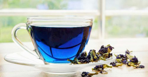 тайский синий чай польза и вред