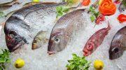 Почему свежая рыба не всегда лучше, чем замороженная