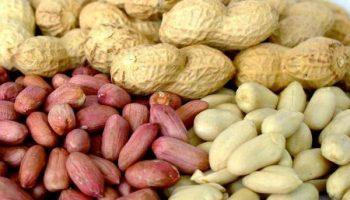 Почему арахис — это не орех и чем он является на самом деле