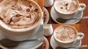 Латте-арт: как превратить молочную пенку на кофе в фантастический рисунок