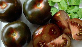Почему черные помидоры намного вкуснее обычных