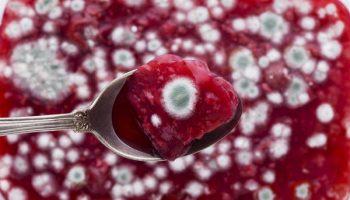 Почему варенье с плесневой пенкой очень опасно для здоровья