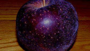 Какие на вкус черные яблоки и почему их называют китайскими алмазами