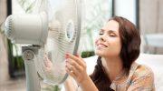 Что лучше всего есть в жару, чтобы быстрее справиться с перегревом