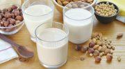 Какие виды растительного молока не хуже привычного коровьего