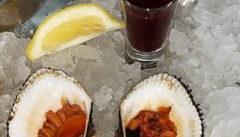 Анадара: чем примечателен самый дорогой деликатес Японии