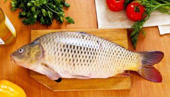 Как и почему четверг стал рыбным днем