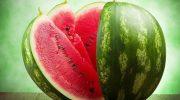 5 аппетитных фактов об арбузах, которые заставят полюбить их еще сильнее
