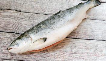 Какого цвета на самом деле филе лосося, выращенного на ферме