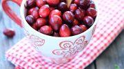 Как легко проверить свежесть ягод клюквы