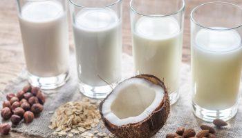 Сколько существует видов растительного молока