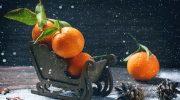 10 фруктов, которые обязательно нужно есть в холодное время года