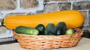 5 овощей, которые в Европе считаются фруктами