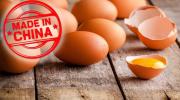 Где придумали искусственные яйца и смогут ли они заменить натуральные