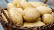 5 овощей, которые заменяют привычную нам картошку в блюдах других стран