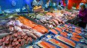 5 дешевых видов рыбы, которые часто продают под видом дорогих