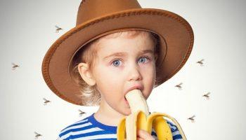 Почему банан привлекает комаров, а чеснок отпугивает