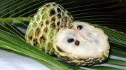 Какой фрукт считается самым сладким