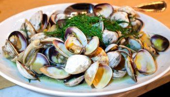 Почему не стоит есть моллюсков в сыром виде