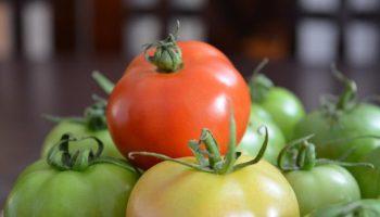 Почему не стоит есть незрелые томаты и картофель
