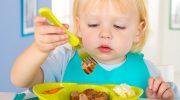 5 причин, почему детское питание несовместимо с вегетерианским меню