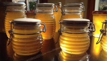 Сколько можно хранить мед, не боясь, что он испортится