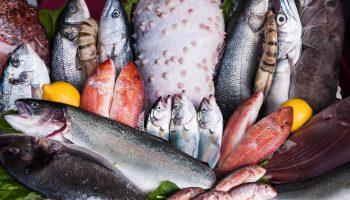 Любителям каких видов рыб стоит опасаться паразитов