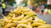В какой стране едят бананы больше всех в мире