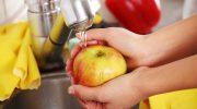Как правильно дезинфицировать фрукты и овощи, чтобы обезопасить свою семью