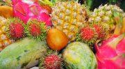 10 фруктов, которые очень похожи на фантастические