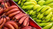 5 сортов бананов, вид которых резко отличается от того, к которому мы привыкли