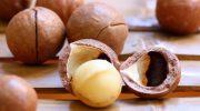Что такое макадамия и почему этот плод обязательно стоит попробовать