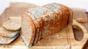 3 причины, по которым покупной хлеб быстро плесневеет