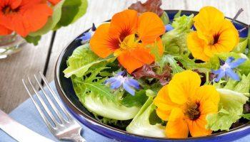 7 съедобных цветов, часто используемых в кулинарии