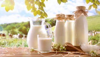 5 мифов о молочной продукции